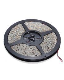 RUBAN DEL BLANC FROID 3528SMD 120L-M IP65 12VDC 5M